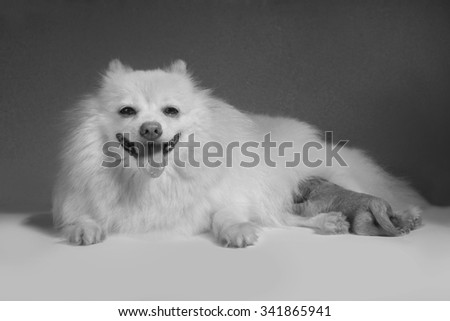 Mother and son, monotone color - stock photo