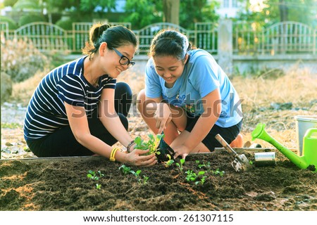 mother and young daughter planting vegetable in home garden field use for people family and single mom relax outdoor activities  - stock photo