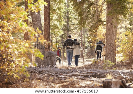 Mother, father and two children hiking in forest, back view