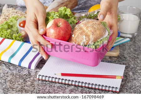 Mother giving healthy lunch for school in the morning - stock photo