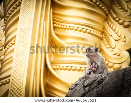 Mother holding baby monkey of Batu Cave sitting at base of golden statue of Lord Muragan at Hindu shrine, Kuala Lumpur.