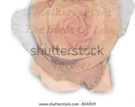 Mother stone Rose