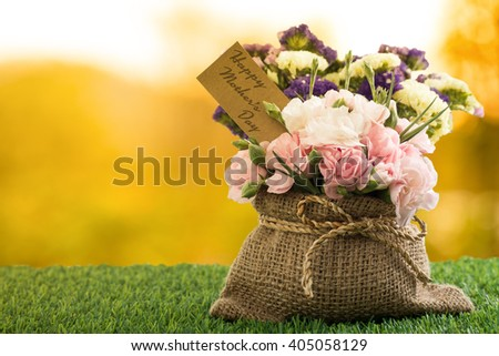 Mothers day flower with Blooming carnation flowers. 