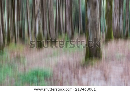 motion blurred forest - stock photo