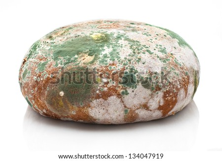 Mould growing old bread isolated on white - stock photo