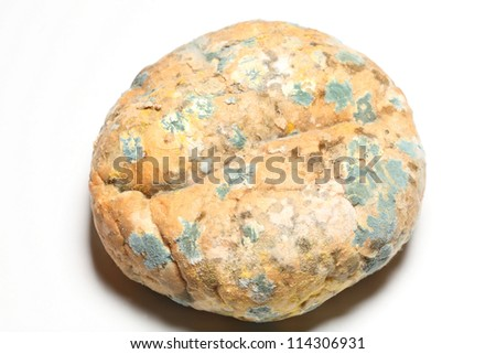 Mould growing old bread nobody on white - stock photo