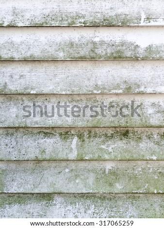 mould on siding - stock photo