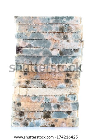 Mouldy bread, isolated on white - stock photo