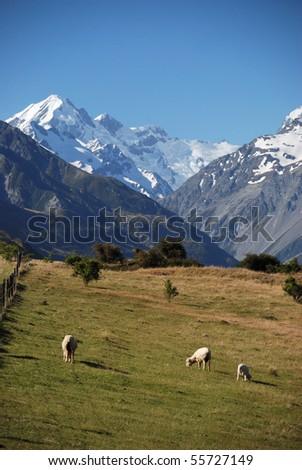Mount Cook Great Scenic - stock photo