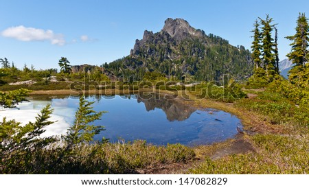 Mount Forgotten reflection in a shallow pond fed by snow melt being surrounded by alpine meadows.