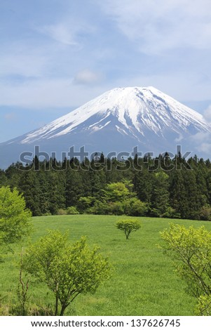 Mount Fuji in early summer, Japan  - stock photo