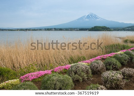 Mount fuji viewpoint with lake and bunch of flowers