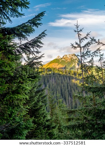 Mount Giewont seen through the spruce trees from the alpine trail in the Tatra mountains, Poland - stock photo