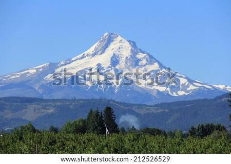 Mount Hood - stock photo