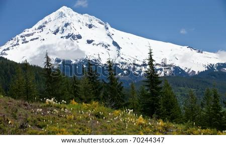 Mount Hood - Oregon - stock photo