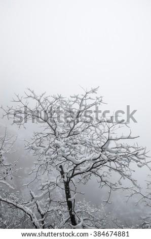 Mount Huangshan winter snow - stock photo