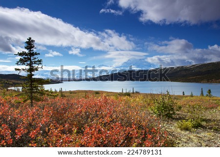 Mount McKinley with blue sky and clouds from Wonder Lake with colourful landscape in fall - stock photo