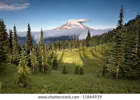 Mount Rainer Wilderness - stock photo