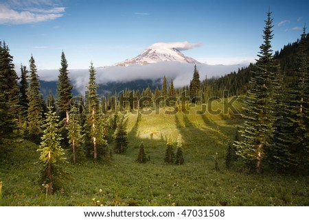 Mount Rainier Morning - stock photo