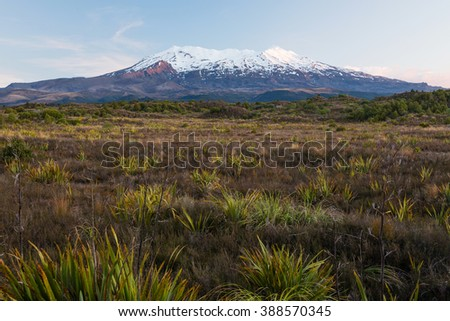 Mount Ruapehu - highest point in the North Island at sunset, New Zealand - stock photo