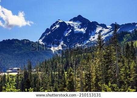 Mount Shuksan Evergreens Mount Baker Ski Area Snow Mountain Washington Pacific Northwest  - stock photo
