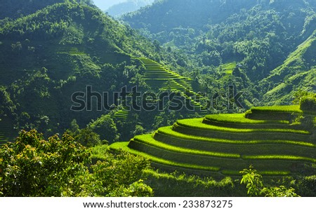 mountain and green rice field landscape, Ha Giang, Vietnam - stock photo