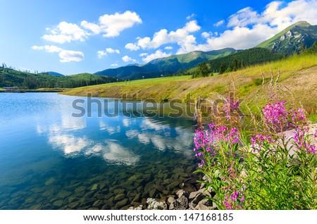 Mountain and lake, Tatra Mountains (Bielskie), Zdiar, Slovakia - stock photo