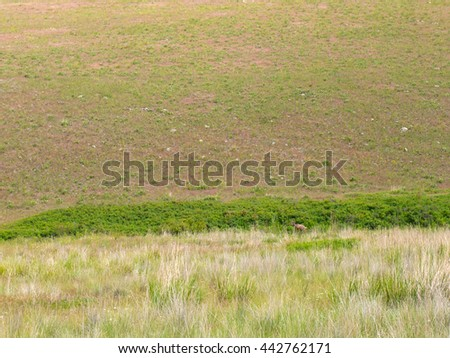 Mountain and Valley View from the National Bison Refuge in Montana USA - stock photo