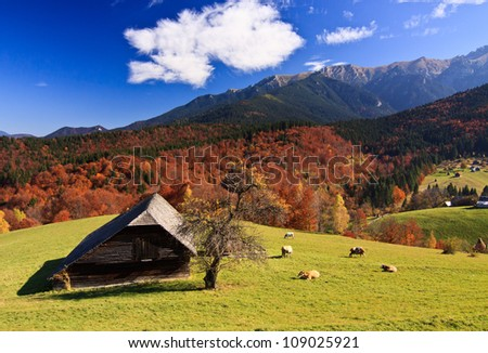 Mountain autumn landscape with colorful forest and traditional houses - stock photo