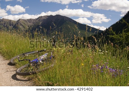 Mountain bike laying down in grass verge in a mountainous landscape.