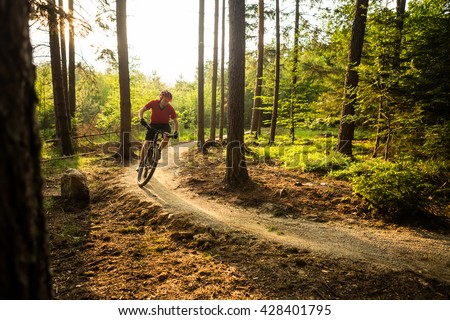 Mountain biker riding on bike in spring inspirational forest sunset landscape. Man cycling MTB on enduro trail path. Sport fitness motivation and summer inspiration. Rider mountain biking in woods. - stock photo