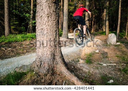 Mountain biker riding on bike in spring inspirational mountains landscape. Man cycling MTB on enduro trail path. Sport fitness motivation and inspiration. Rider mountain biking in summer woods. - stock photo