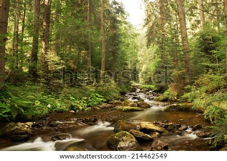 Mountain creek - stock photo