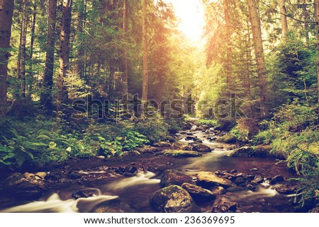Mountain creek - stock photo
