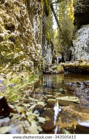 mountain creek in autumn, Apuseni, Romania  - stock photo