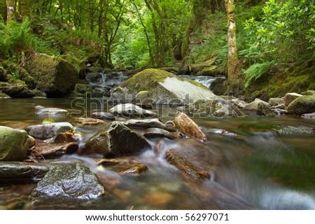 Mountain creek in Killarney National Park - stock photo