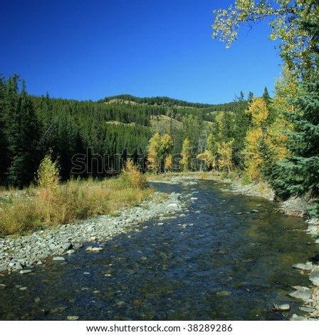 Mountain creek, lined with golden leaved trees and spruce trees; colourful hills in background; bright blue sky; Alberta, Canada; autumn colours - stock photo
