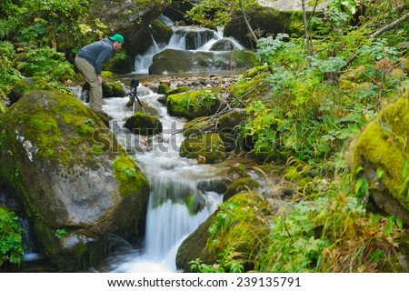 mountain forest landscape creek with fresh water - stock photo