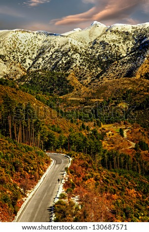 Mountain Forrest With Person Walking Up Road. - stock photo