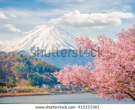 Mountain Fuji in spring at Kawaguchiko, japan. Cherry blossom Sakura.   Highest mountain in Japan. Most beautiful mountain in Japan. - stock photo