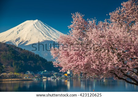 Mountain Fuji in spring ,Cherry blossom Sakura - stock photo
