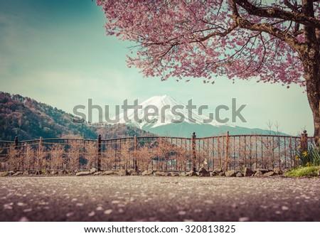 Mountain Fuji in spring ,Cherry blossom Sakura vintage tone. Pink sakura at kawaguchiko japan. Sakura in spring from japan.  - stock photo
