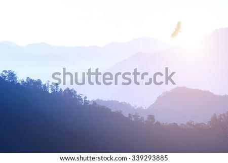 Mountain in morning fog - stock photo