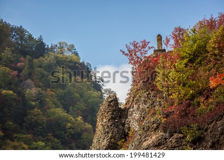 mountain japan with autumn leaves