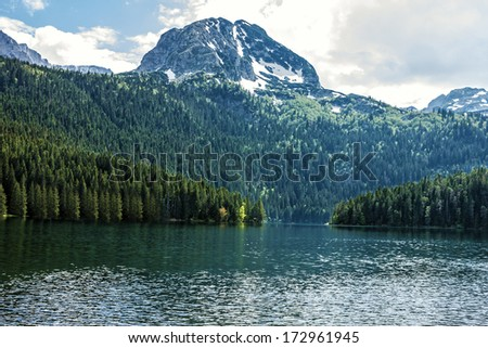 Mountain lake and evergreen coniferous forest, Durmitor, Montenegro.