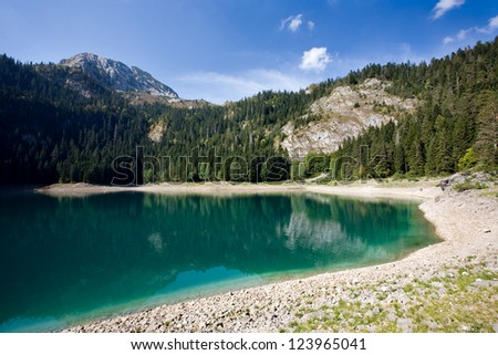 Mountain lake and forest - stock photo