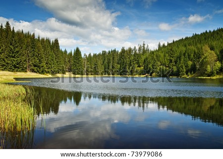 mountain lake and forest panorama - stock photo