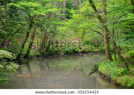 Mountain lake in the Tennessee, USA - stock photo