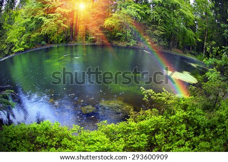 Mountain Lake in the wild taiga during heavy rain. Old wood on a background of magic and fairy tale, according to legend, the water, water and mermaids live, people do not have. - stock photo