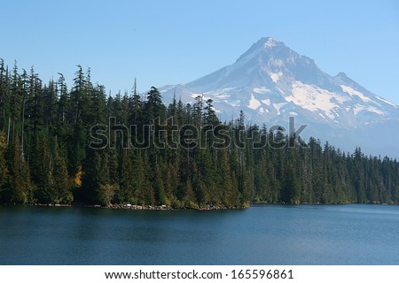 Mountain lake with beaches covered with pine trees. - stock photo